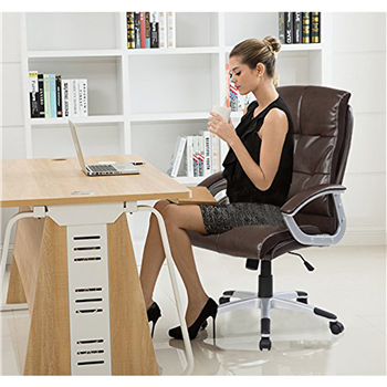 Merax Contemparory New Office Lumbar Support Chair Computer Gaming Chair High Back Executive Computer Desk Office Chair
