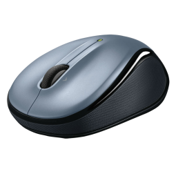 TTgray mouse